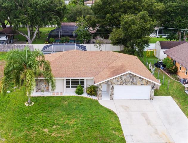 744 Neptune Street, Port Charlotte, FL 33948 (MLS #C7405035) :: G World Properties
