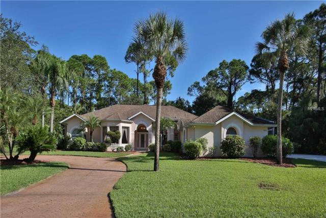 18156 Bredette Avenue, Port Charlotte, FL 33954 (MLS #C7406289) :: The Lockhart Team