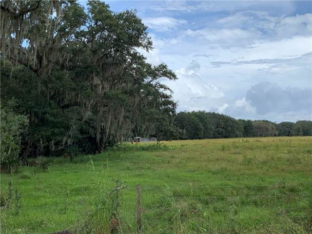 Moffitt & Sasser Road, Zolfo Springs, FL 33890 (MLS #C7406654) :: Young Real Estate
