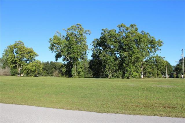 25101 Estrada Circle, Punta Gorda, FL 33955 (MLS #C7408187) :: Delgado Home Team at Keller Williams