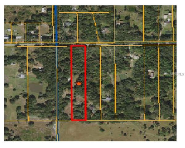 2901 Bruton Road, Plant City, FL 33565 (MLS #C7409856) :: Homepride Realty Services