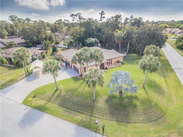 1470 Dorchester Street, Port Charlotte, FL 33952 (MLS #C7410136) :: Homepride Realty Services