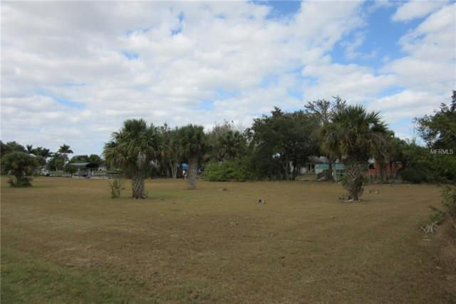 28434 Royal Palm Drive, Punta Gorda, FL 33982 (MLS #C7410604) :: Griffin Group