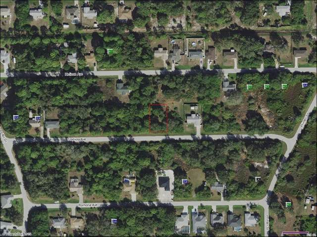 12004 Gladiola Avenue, Port Charlotte, FL 33981 (MLS #C7411717) :: Positive Edge Real Estate