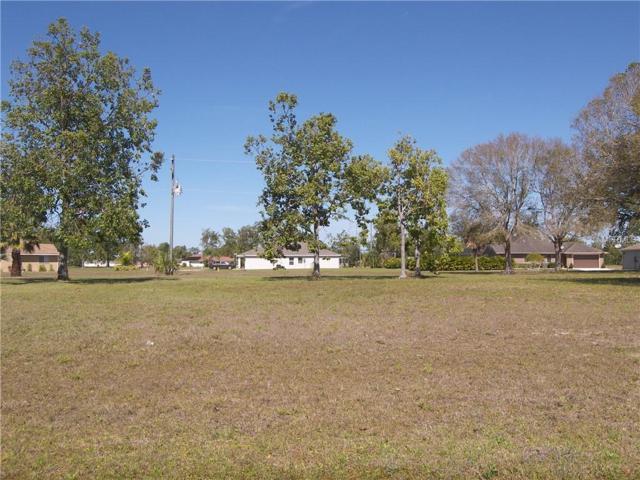 16446 Minorca Drive, Punta Gorda, FL 33955 (MLS #C7412045) :: Zarghami Group