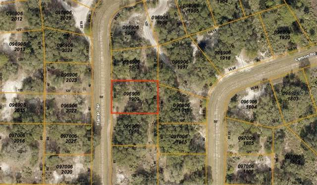 Hamer Terrace, North Port, FL 34291 (MLS #C7412284) :: Bustamante Real Estate
