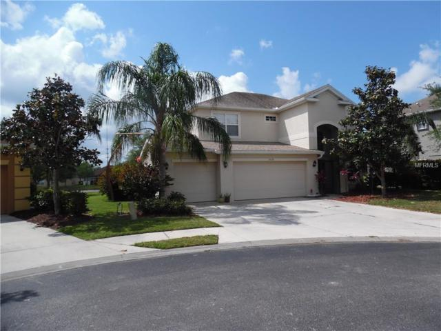 24528 Sunrise Drive, Port Charlotte, FL 33980 (MLS #C7414332) :: Team Bohannon Keller Williams, Tampa Properties