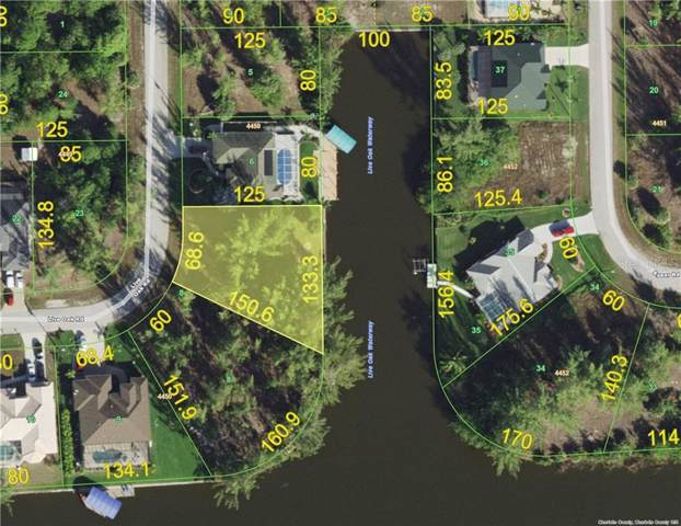 10482 Live Oak Road, Port Charlotte, FL 33981 (MLS #C7415537) :: The BRC Group, LLC