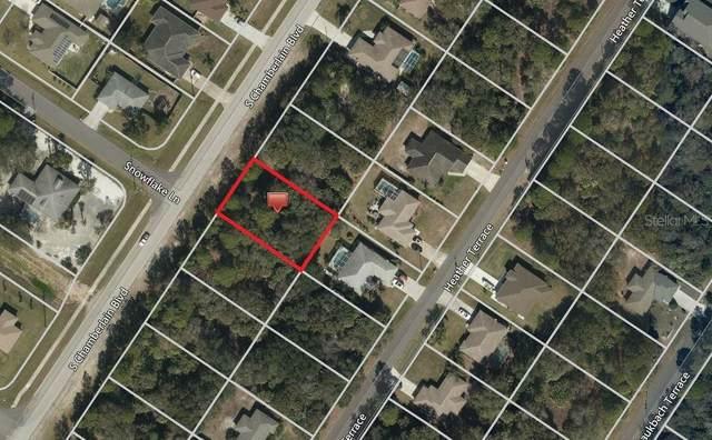LOT 8 S Chamberlain Boulevard, North Port, FL 34286 (MLS #C7420516) :: Team Bohannon Keller Williams, Tampa Properties