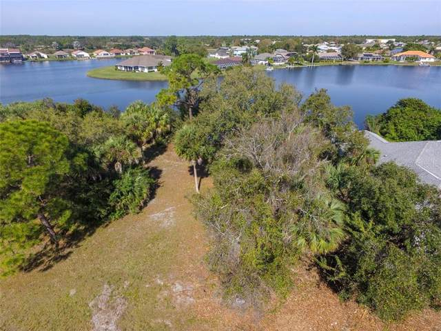 12990 SW David Drive, Lake Suzy, FL 34269 (MLS #C7424003) :: EXIT King Realty