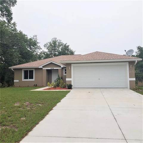 12008 Ramona Avenue, Port Charlotte, FL 33981 (MLS #C7428069) :: The A Team of Charles Rutenberg Realty