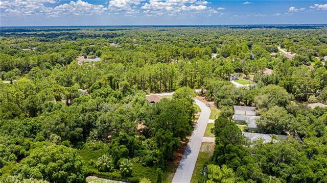 S Kaba Street, North Port, FL 34288 (MLS #C7429307) :: Griffin Group
