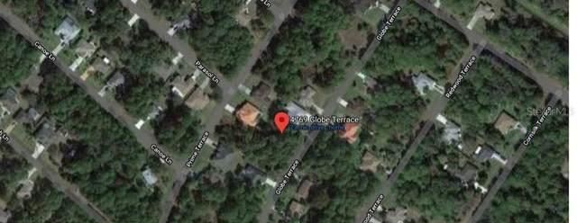 4769 Globe Terrace, North Port, FL 34286 (MLS #C7429467) :: Lockhart & Walseth Team, Realtors