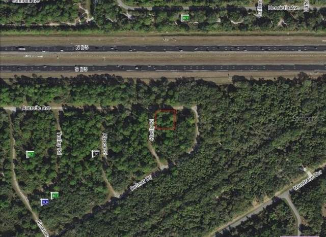 Shelly Street, North Port, FL 34291 (MLS #C7430047) :: Team Buky
