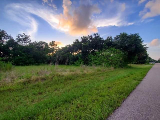 1049 Guild Street, Port Charlotte, FL 33952 (MLS #C7430893) :: Burwell Real Estate