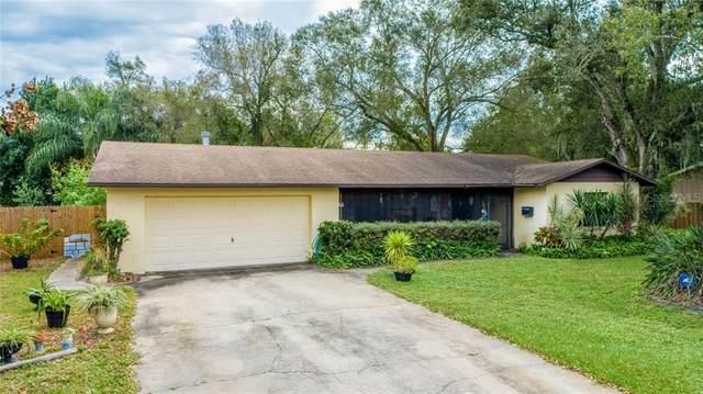 125 S Hernando Avenue, Arcadia, FL 34266 (MLS #C7436074) :: Young Real Estate