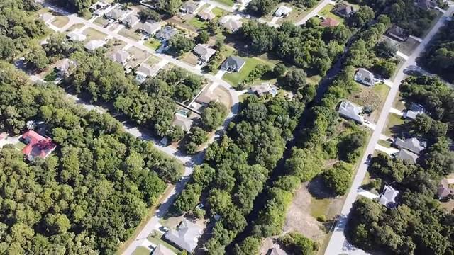 Joyce Avenue, North Port, FL 34286 (MLS #C7444111) :: Rabell Realty Group