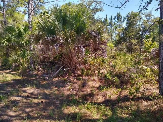 17101 Constance Lane, Port Charlotte, FL 33948 (MLS #C7446319) :: Zarghami Group