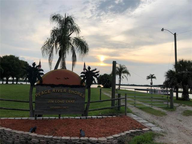 29218 Alfaretta Avenue, Punta Gorda, FL 33982 (MLS #C7446702) :: Cartwright Realty