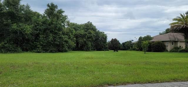 7913 SW Sunny Oaks Drive, Arcadia, FL 34269 (MLS #C7446724) :: Team Turner