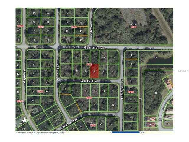 15096 Amity Avenue, Port Charlotte, FL 33953 (MLS #D5903993) :: Griffin Group