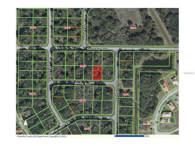 15104 Amity Avenue, Port Charlotte, FL 33953 (MLS #D5903994) :: Griffin Group
