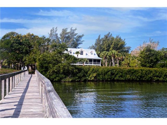9078 Wharf Avenue, Placida, FL 33946 (MLS #D5915054) :: The BRC Group, LLC
