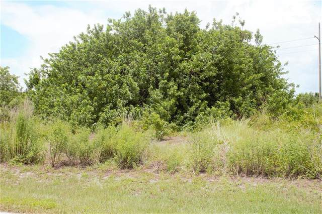 27064 Solomon Drive, Punta Gorda, FL 33983 (MLS #D5919571) :: KELLER WILLIAMS ELITE PARTNERS IV REALTY