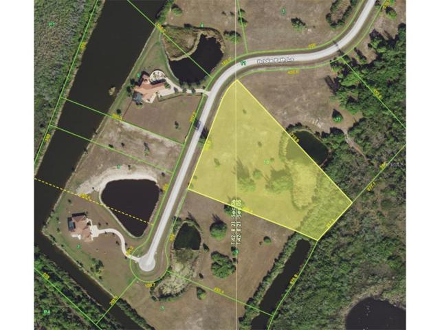11634 Bridle Path Lane, Placida, FL 33946 (MLS #D5920482) :: Griffin Group