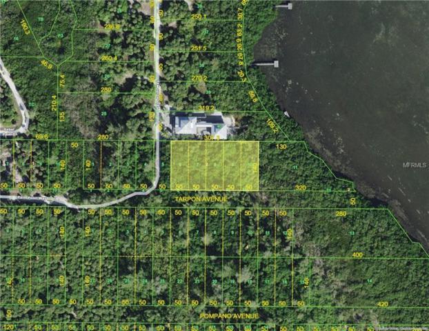 6-10 New Pass Haven, Placida, FL 33946 (MLS #D5923326) :: The BRC Group, LLC