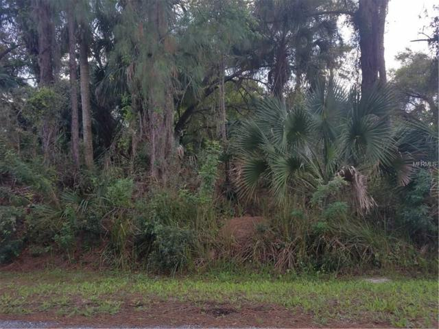 Marjorie Lane, North Port, FL 34286 (MLS #D5923352) :: Premium Properties Real Estate Services