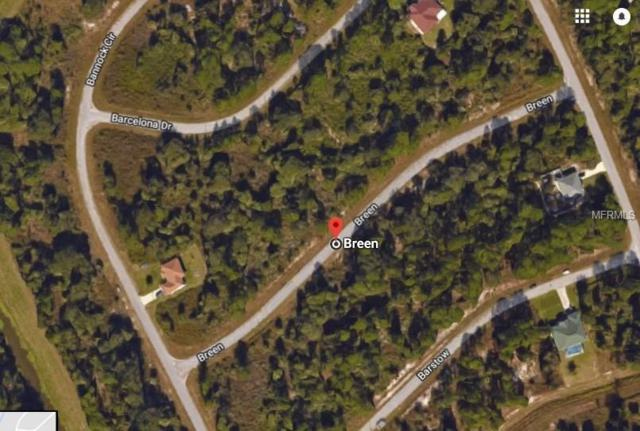 Breen Avenue, North Port, FL 34288 (MLS #D5923824) :: Griffin Group