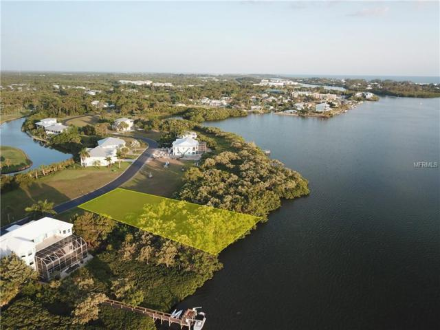 10011 Eagle Preserve Drive, Englewood, FL 34224 (MLS #D6102048) :: The Duncan Duo Team