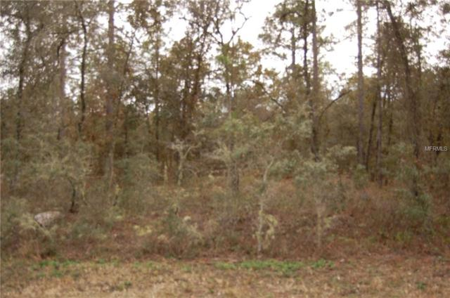 Lot 7 Hank Hoff Ave NW, Dunnellon, FL 34431 (MLS #D6102896) :: Homepride Realty Services