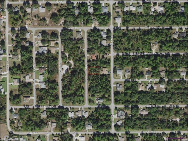 2314 Omar Street, Port Charlotte, FL 33948 (MLS #D6104348) :: Homepride Realty Services