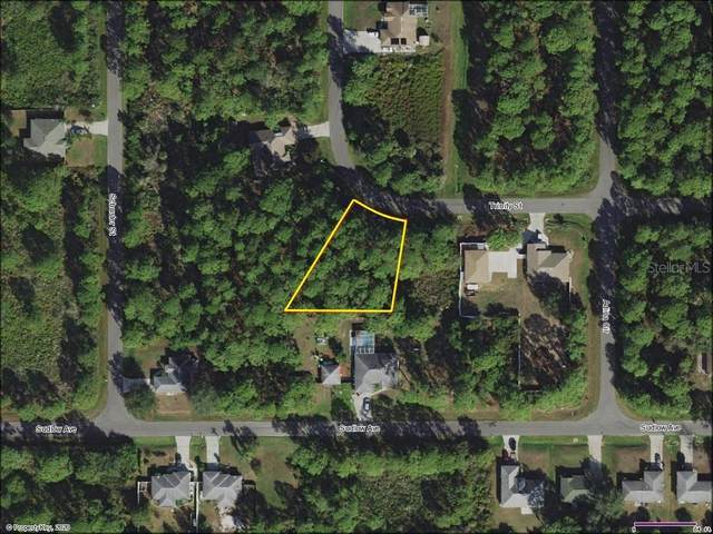 Trinity Street, North Port, FL 34291 (MLS #D6113653) :: Bustamante Real Estate