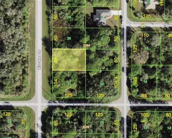 358 Biscayne Drive, Port Charlotte, FL 33953 (MLS #D6114114) :: Sarasota Home Specialists