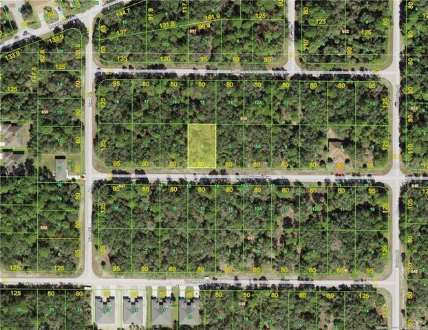 17124 Belmont Avenue, Port Charlotte, FL 33948 (MLS #D6117852) :: Southern Associates Realty LLC