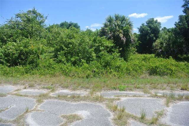 Ironside Street, North Port, FL 34288 (MLS #D6118624) :: Southern Associates Realty LLC
