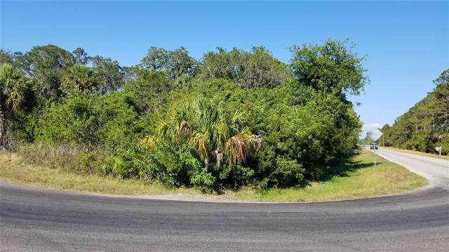 13428 Chamberlain Boulevard, Port Charlotte, FL 33953 (MLS #D6119151) :: The Price Group