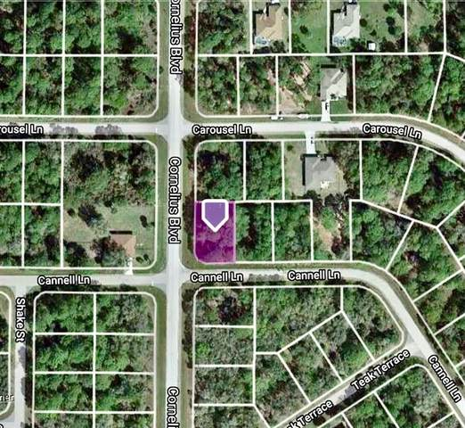 1212 Cornelius Boulevard, Port Charlotte, FL 33953 (MLS #D6119508) :: The Price Group