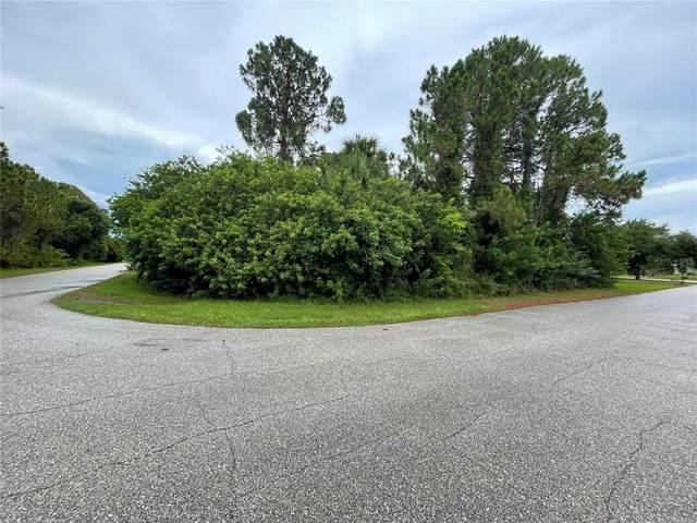 7239 Basel Lane, Englewood, FL 34224 (MLS #D6119524) :: Stellar Home Sales