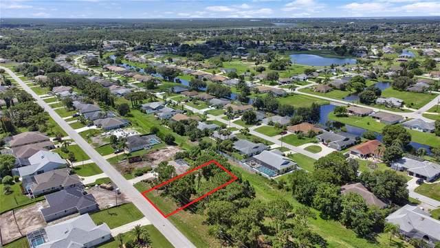 81 Mariner Lane, Rotonda West, FL 33947 (MLS #D6119949) :: Team Turner