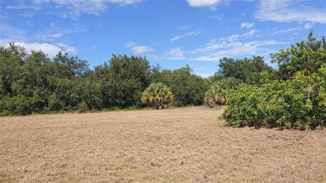 161 Theresa Boulevard, Port Charlotte, FL 33954 (MLS #D6121840) :: Armel Real Estate