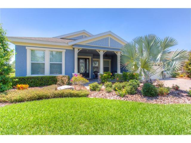 7045 Hatpin Loop, Wesley Chapel, FL 33545 (MLS #E2204282) :: The Duncan Duo & Associates