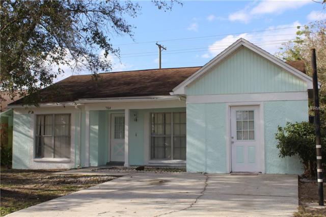 7814 Robert E Lee Road, Tampa, FL 33637 (MLS #E2401087) :: The Light Team