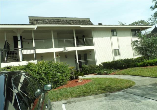 29129 Bay Hollow Drive 3213 & 3215, Wesley Chapel, FL 33543 (MLS #E2401155) :: Lovitch Realty Group, LLC