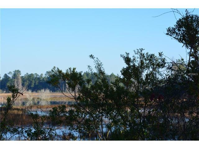 Sharon Road, Groveland, FL 34736 (MLS #G4822674) :: RealTeam Realty