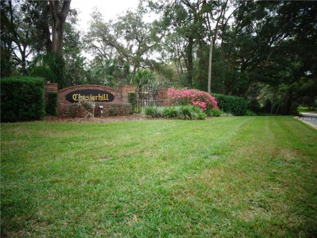 7089 Norne Lane, Mount Dora, FL 32757 (MLS #G4838538) :: Mark and Joni Coulter | Better Homes and Gardens