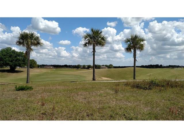 24250 Calusa Boulevard, Eustis, FL 32736 (MLS #G4839444) :: The Duncan Duo Team